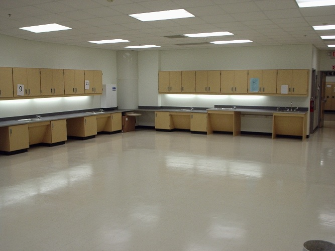 Rogers Elementary - Science - Education